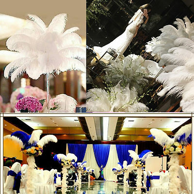 10pcs White Natural Ostrich Feathers Wedding Party Prom Beauty 15-55cm/6-22inch