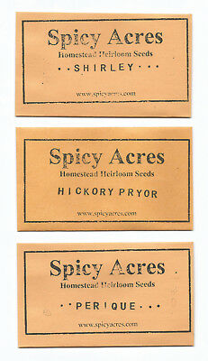 Spicy Acres 3 VARIETY PIPE BLEND #1 600+ Tobacco Seeds FAST ship EASY grow