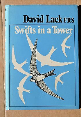 Swifts in a Tower by David lack FRS. Hardback