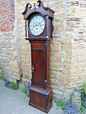 "Derbyshire 8 Day Grandfather/longcase Clock ""john Cotterill Bakewell"" Restored !"