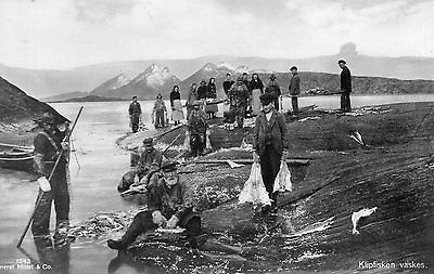 OLD MITTET POSTCARD CIRCA 1930's - NORWAY LOFOTEN ISLANDS - KLIPFISKEN VASKES