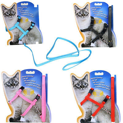 4 Color Cat Puppy Adjustable Harness Collar Nylon Leash Lead Safety Walking Rope