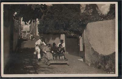 138.949  Portugal, Madeira - Funchal, Mount-Car