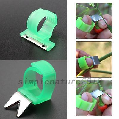 V T Flat Shape Vegetable Fruit Picker Garden Picking Ring Harvesting Cut Tools