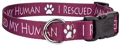 Country Brook Design® Deluxe Dog Collar - Rescue Collection