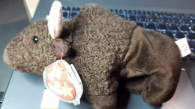 TY Beany Baby Roam Vintage 1998 with Errors