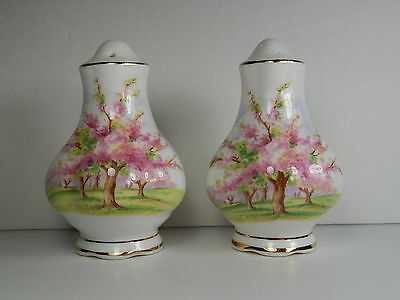 Vintage Royal Albert Blossom Time Salt and Pepper Shakers. Bone China England