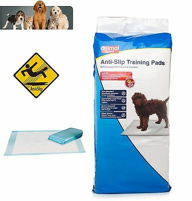 Animal Instincts Anti-Slip Dog Puppy House Training Pads 100 or 50  60x60cm