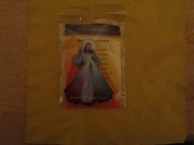 Divine Mercy magnetic plate