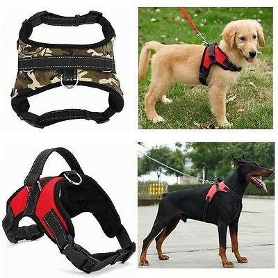 Leash Pet Dog Cat Control Harness Adjustable Soft Walk Collar Safety Chest Strap