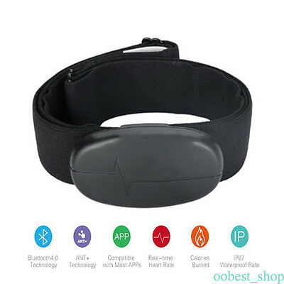 Black H6 Bluetooth V4.0 Smart Wristband Heart Rate Monitor for Android IOS