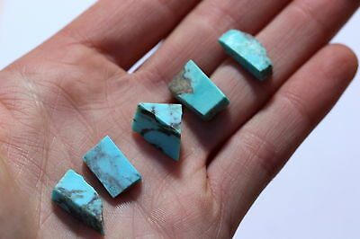 Reduced! 5 Pcs Natural Arizona Bisbee Rough Turquoise Wholesale Lot 2