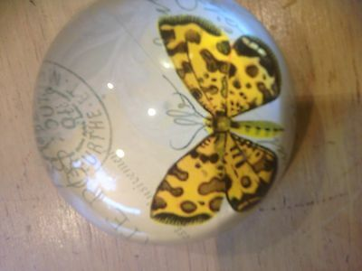 Butterfly Art Glass Paper Weight -