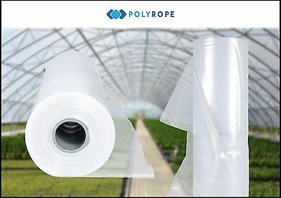 POLYTUNNEL 8m WIDE CLEAR POLYTHENE COVER UV5 GREENHOUSE FOIL PLASTIC MEMBRANE