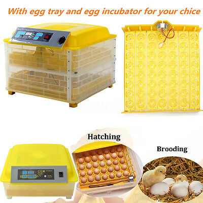 Pro Digital Chicken Eggs Incubator Temperature Control Automatic Hatcher Turner