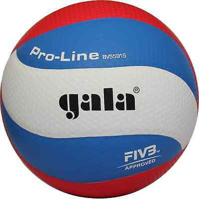 Gala PRO-LINE BV5591S volleyball FIVB and USAV Approved