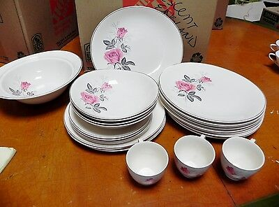 24 Pieces of Vintage Johnson Bros Pink Rose Gray Leaves Oval Shape China England