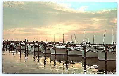 Postcard DE Rehoboth Beach Sunset Indian River Yacht Basin D10