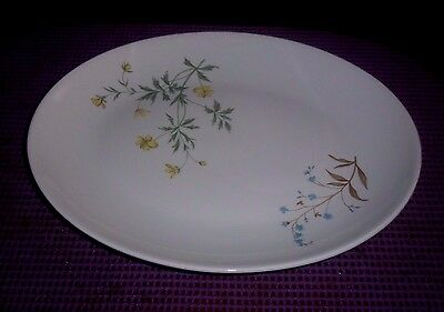 "Peter Terris  Shenango China Co. Serving Platter  Dinner ware  11"" LONG X 9"" W"