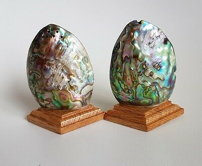 Vintage Paua Shell Salt And Pepper Shakers~Collectable New Zealand~Mid Century
