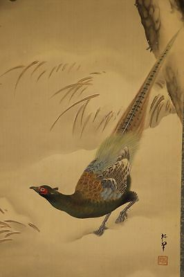 """JAPANESE HANGING SCROLL ART Painting """"Pheasant"""" Asian antique  #E6501"""