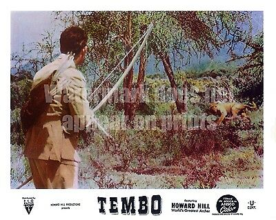 """Extremely rare British issued Howard Hill """"Tembo"""" Lobby Cards"""