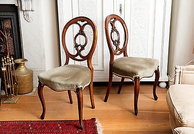 Pair of antique Victorian balloon walnut back chairs