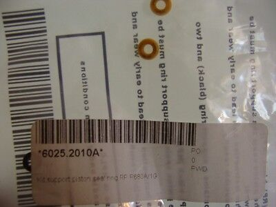 Dionex Support Piston Seal Ring , Rp P680A/1G , 6025.2010A