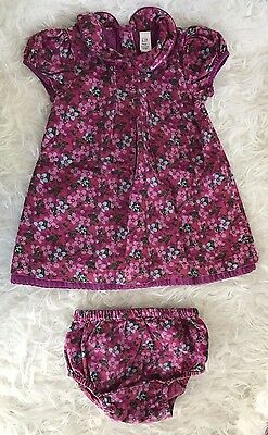 Girls Baby Gap Pink Flowers Floral Cord Corduroy Dress 12 18 And Bloomers