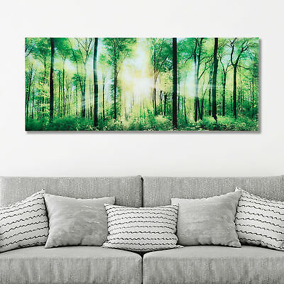 glasbilder wandbild druck auf glas 125x50 wasserfall wald steine natur eur 69 95 picclick de. Black Bedroom Furniture Sets. Home Design Ideas