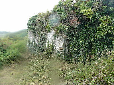 Cottage in ruins with 0.9 acre plot (southern Ireland) Deposit And Ret To Buy