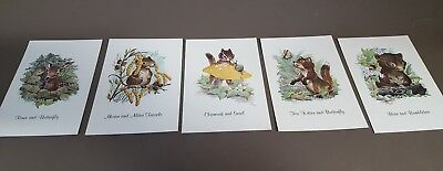 Maurice Day Animal Whimsy 3.5x5.5 Vintage Postcards 5 Different Animal Varieties