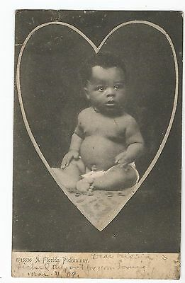 Postcard 1909 A Florida Pickaninny Black Americana Undivided Back