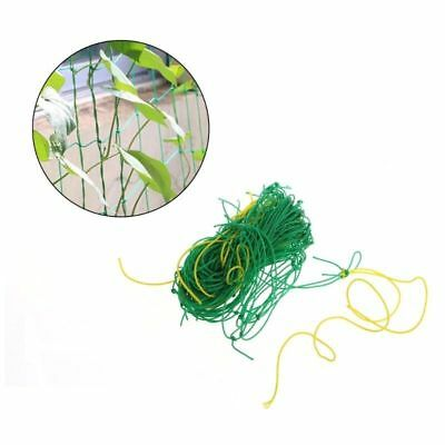 Nylon Trellis Netting Garden Climbing Bean Plant Nets Grow Fence Green Support