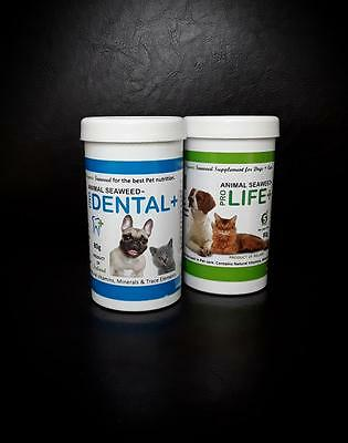 Animal Seaweed - Organic supplements for Dogs + Cats 80g x2