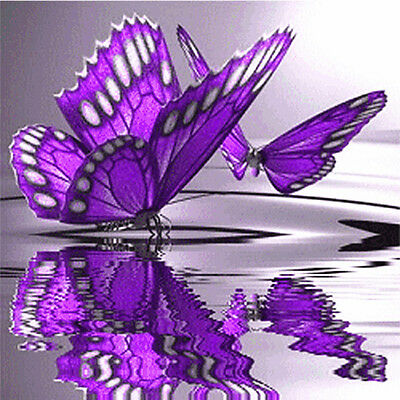 5D DIY Full Diamond Embroidery Painting Cross Stitch 20*20cm Z019 S3 Butterfly