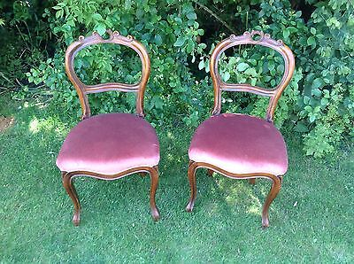 PAIR Antique Vintage Victorian Mahogany Balloon Back Shabby Chic Dining Chairs