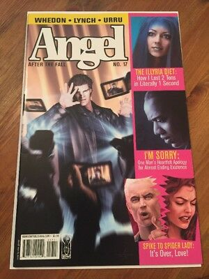 Angel After the Fall comic #17 cover A