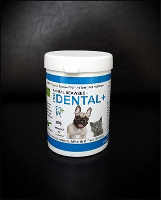 Animal Seaweed. PRO DENTAL+ Organic Dental supplement for Dogs + Cats 80g