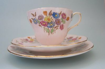 """Vintage """"  Foley """" Bone China Cup Saucer Side Plate Trio Pale Pink Ditsy Flowers"""
