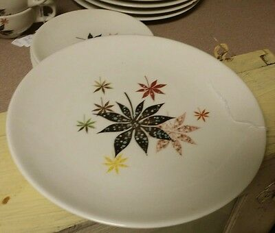 Peter Terris for Shenango China Company Dinner Plate Calico Leaves Diner ware