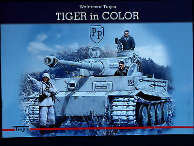 Tiger In Color