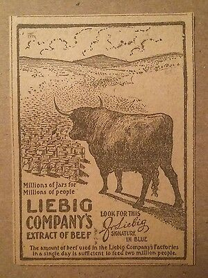 1904 Liebig Company Extract of Beef Ad