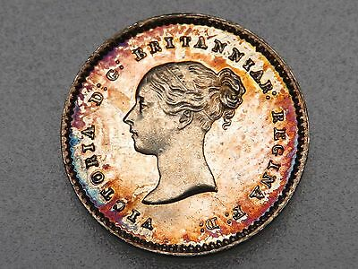 1852 Great Britain Victoria Silver Maundy 2 Pence KM#729 beautifully toned UNC
