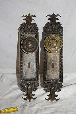 Antique 1903 Heavy LARGE Brass Fleur De Lis Door Knobs & Back Plates Ornate