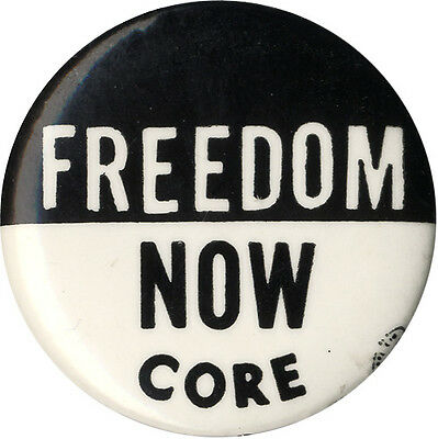 1960s Civil Rights Movement FREEDOM NOW Racial Equality Button
