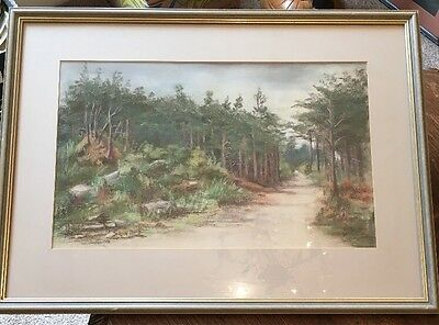 Original Framed Pastel Picture Of Pine Woods In Northumberland By Eve.S.Watson