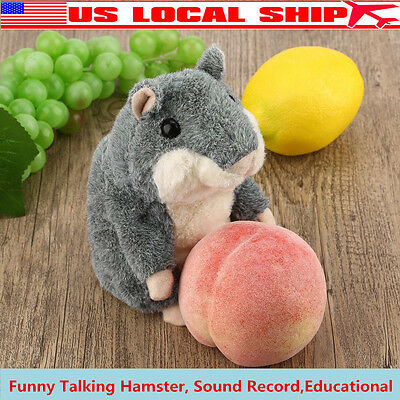 Cute Talking Hamster Plush Toy Sound Record Hamster Toy Animal Toy Gray NEW GIFT