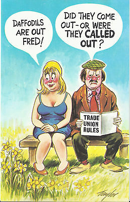Vintage 1970's Bamforth COMIC Postcard (as new) were they called out #569