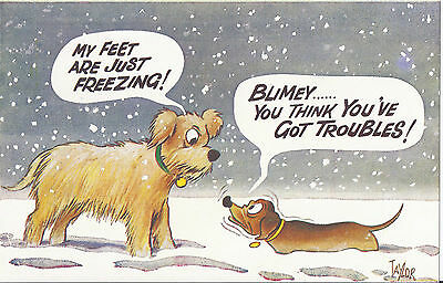 Vintage 1970's Bamforth COMIC Postcard (as new condition) You've troubles #2626